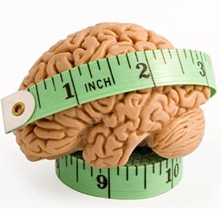metro cervello sapere lunga